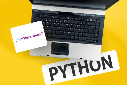 Python Web Application Development Services