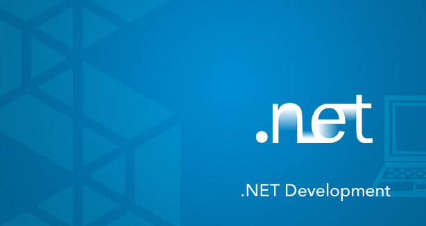 .NET Website Development Company in India